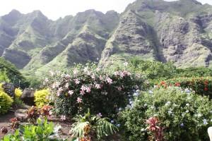 Landschaft auf Oahu